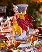 Leaves, apple, table deco and carafe with autumn Parthenocissus leaves