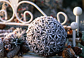 Ball with star anise covered in hoarfrost, cones