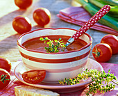 Lycopersicon tomato soup in bowl, thymus