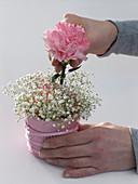 Carnation gypsophila glasses