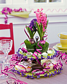 Hyacinthus on etagere in pot with leaves of Gaultheria