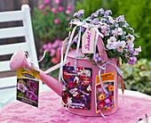 Gift to a garden friend hobby gardener