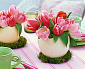 Small bouquet of tulipa (tulip) in ostrich egg as a vase