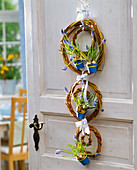 Muscari in wreaths from Salix at the door