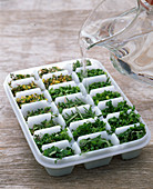 Herbs as ice cubes
