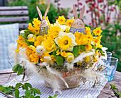 Gesteck aus verschiedenen Narcissus (Narzissen), Tulipa (Tulpen), Carpinus