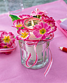 Lantern made of two nested glasses with Primula flowers