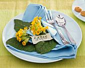 Table decoration with primula veris, blue cloth napkin