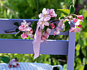 Branch of malus (apple) on chair back
