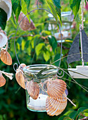 Lantern decorated with shells and grass hanging on tree