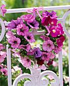 Wreath made of petunia on balcony railing