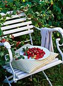 Plate of freshly picked raspberries on chair