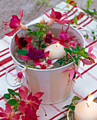 Fuchsia (fuchsia) in metal container with water and floating candle