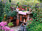 Workplace in the cottage garden