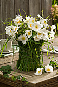 Anemone bouquet in vase with grass dress