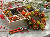 Collected autumn fruits and berries in wooden box