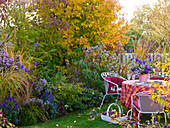 Row house garden with seating and autumn bed