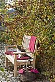 Wooden bench under malus (ornamental apple tree)