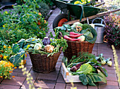 Baskets with vegetables