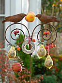 Bird food on iron bar with birds
