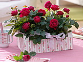 Roses in fruit staircase with napkin technique