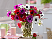 Bouquet of Anemone coronaria (Crown anemone) and Cytisus