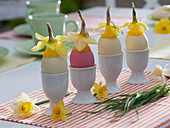 Easter eggs dyed with natural colors, narcissus (narcissus)