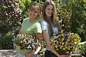 Young women with viola cornuta 'Microla Purple & Yellow'