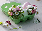 Egg carton with colored and white eggs, small bouquets