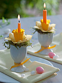 Eggcup with moss and narcissus (narcissus) as candlestick