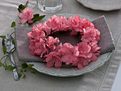 Small wreath from Rhododendron simsii (Zimmerazalee)