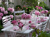 Table decoration with rhododendron