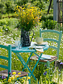 Seating place in the meadow, bouquet of Ranunculus, Rumex