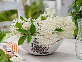 Sambucus nigra flowers in cereal bowl with elderberry decoration