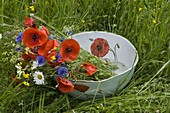 Meadow flowers in cup with poppy-seed decor