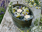 Small meadow flowers wreath in the water