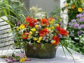 Jardiniere with meadow flowers