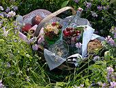 Picnic basket with fruits, water and bread