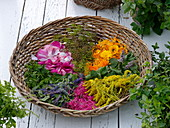 Wicker basket with flowers and tea and scented herbs leaves