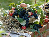 Grapes and apples in basket of clematis tendrils, wheat