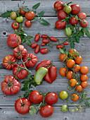 Tableau mit verschiedenen Tomatensorten