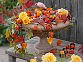 Terracotta bowl with foot filled with roses and fairy lights made of physalis