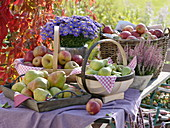 Harvest table with apples and pears