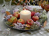 Autumnal cup with apples and white candle