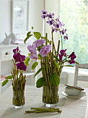 Arrangements of orchids in glass vases