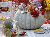 Hollow white pumpkin 'Muscat de Provence' filled with cutlery