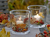 Lanterns with rose hips, autumn leaves and clematis fruit stands