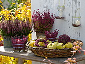 Basket with quinces, lanterns, ball, wreath made with Erika