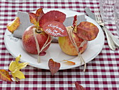 Autumn decoration on white plate