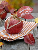 Autumn napkin deco, apple (malus) with corded heart